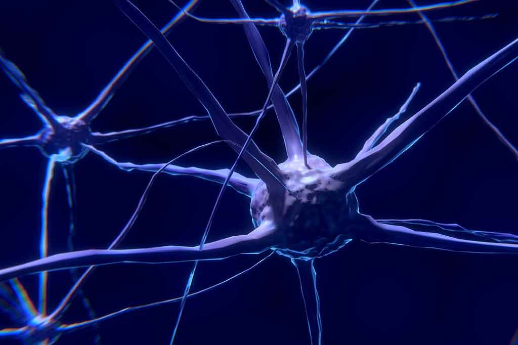 'Brain changes' could provide early warning sign for Parkinson's disease
