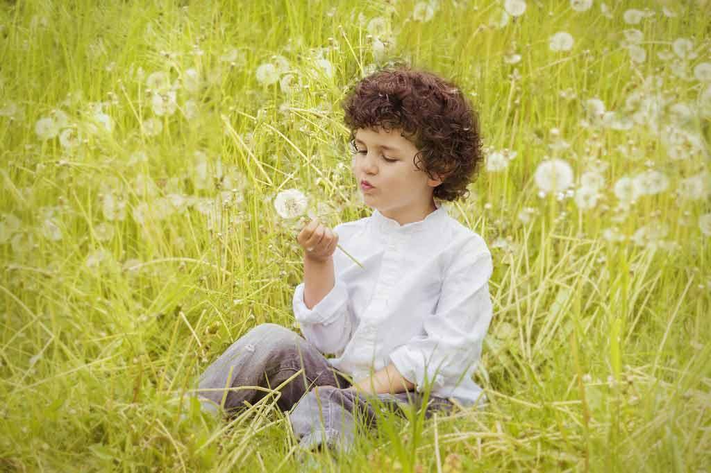 Echinacea allergy warning for children under 12