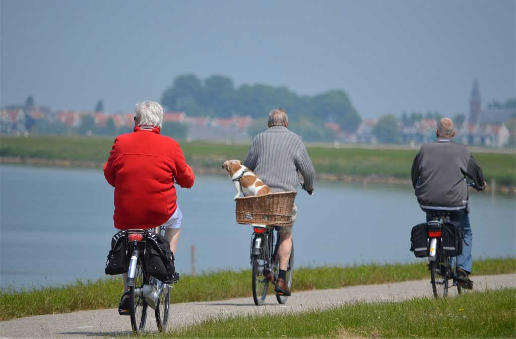 Could a blood test in middle age predict dementia risk?