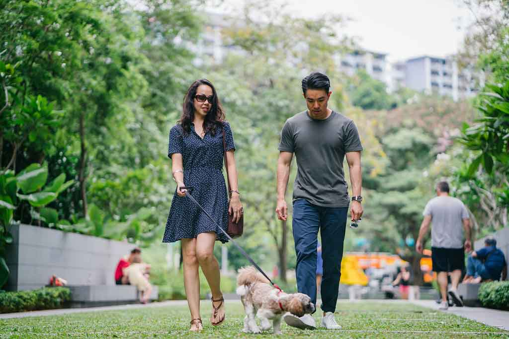 Pregnant women with dogs walk more